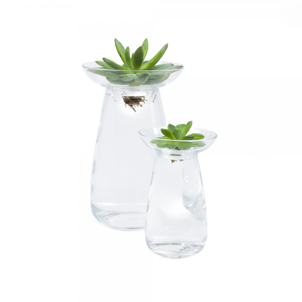 Aqua culture vase - 2 sizes available