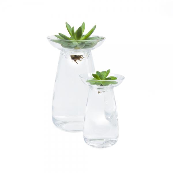 Vase pour aquaculture - 2 tailles disponibles-kinto