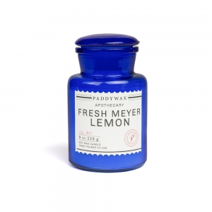 """Bougie """"Blue Apothecary"""" - Menthe feuille & Cardamome - Paddywax"""