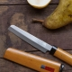 Fruit knife