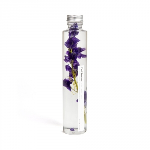 Bottle plant - Delphinium (purple)