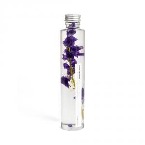 Plante immergée 200ml - Delphinium violet - Slow Pharmacy