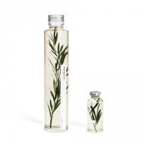 Plante immergée - Melaleuca alternifolia Slow Pharmacy