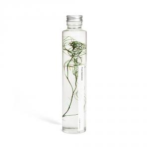 Plante immergée 200ml - Goanacrow - Slow Pharmacy