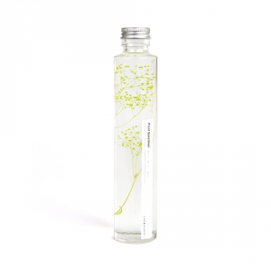 Plante immergée 200ml - Gypsophile Elegans rouge- Slow Pharmacy