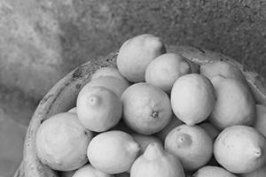 Lemon Story - Des recettes originales